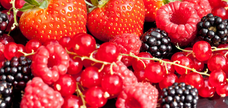 Berries - Strawberry, Currant, Blackberry, Raspberry